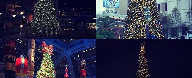 Huge Christmas trees sprouting all over the city and Vegas too. From top left Ghirardelli square, Union Square, Bellagio and Pier 39 all getting into