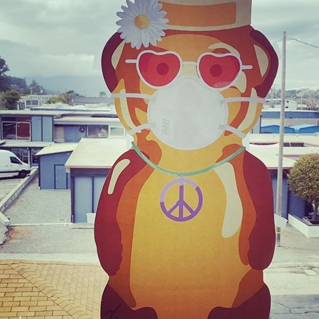 "Honey Bear Hunt project by @fnnch makes an appearance in Sausalito. brining a bit of fun to the Bay Area and now everywhere - with his hunt project. Through his other covid projects he has raised  over $125,000 for deserving charities in San Francisco. Over 3500 Masked Honey Bears with their distinctive white masks will be hidden all over. . This ""summer of love""  bear is in my art studio window on the 2nd floor of the @icbartists building facing north and overlooking @heathceramics come by and say hello and tag  and me too @brianhuberart . . ."